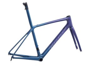 GIANT TCR ADVANCED SL FRAMESET